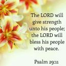 Image result for THE PROMISE OF PEACE IN THE MIDST OF STORM
